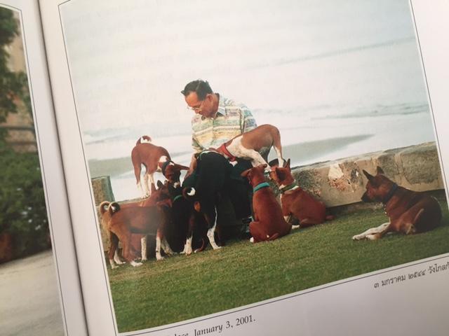 ホワヒンにある宮殿で愛犬のトーンデーンやその子犬たちと過ごさせるプミポン国王(『The Story of Tong Daeng』より)