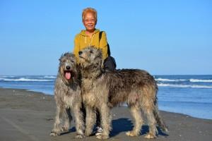 斉藤さんと愛犬(右が蓮、左が涼)