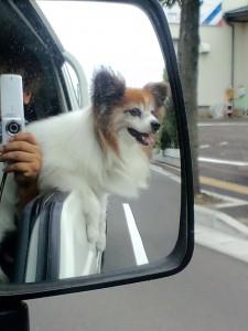 大好きなドライブへ!2010 年ごろ