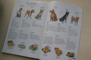 『トーンデーン物語』の絵本版にのみ、トーンデーンの子犬たちそれぞれの名前にちなむ伝統菓子や出生データも記載されています